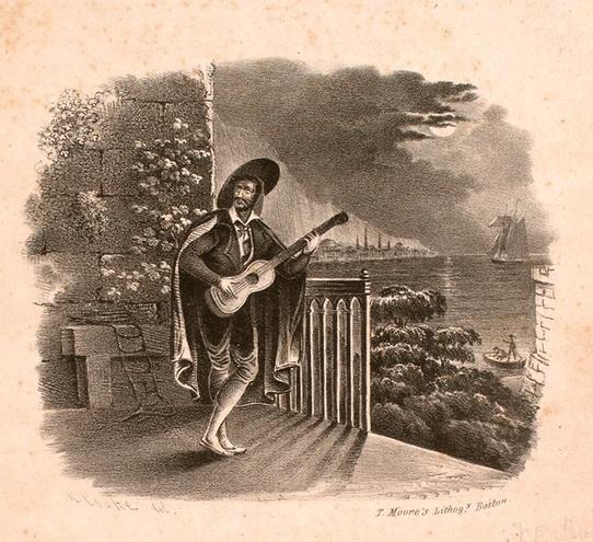 The pirate's serenade