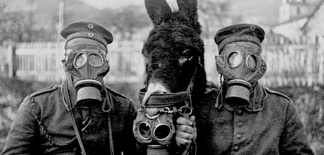 maschere antigas prima guerra mondiale