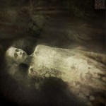 Bonny_Swan_by_Sarachmet