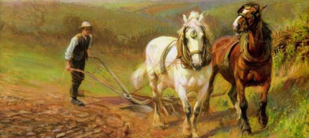 THE ROVIN PLOUGHBOY