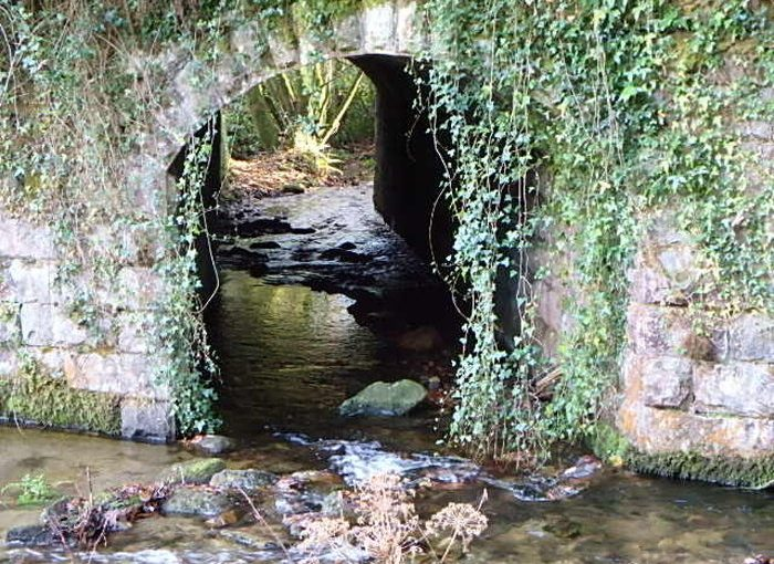 The Streams of Bunclody