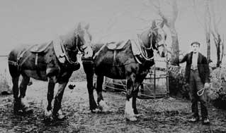 horsemanpair