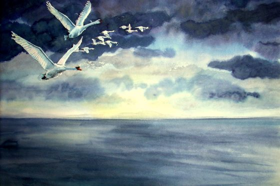 I cigni di Coole/The Wild Swans at Coole