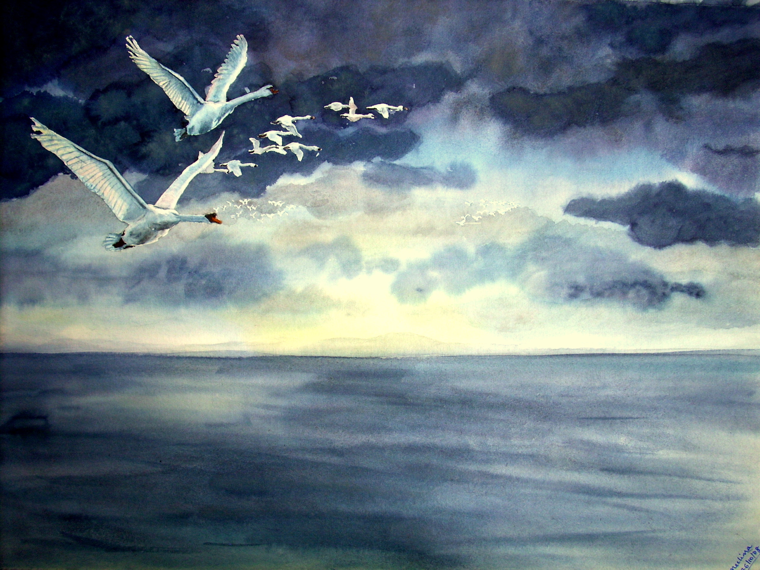 tratto da https://watercolorjournal.wordpress.com/2008/10/26/the-migration-in-the-story-of-the-swan-series/