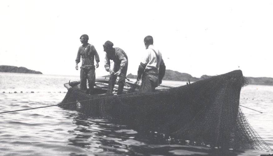 terranova-pesca-merluzzo
